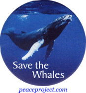 Save The Whales - Button