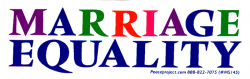 MS145 - Marriage Equality - Mini-Sticker