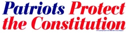 S390 - Patriots Protect The Constitution - Bumper Sticker