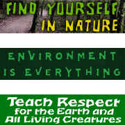 Environment & Nature - All